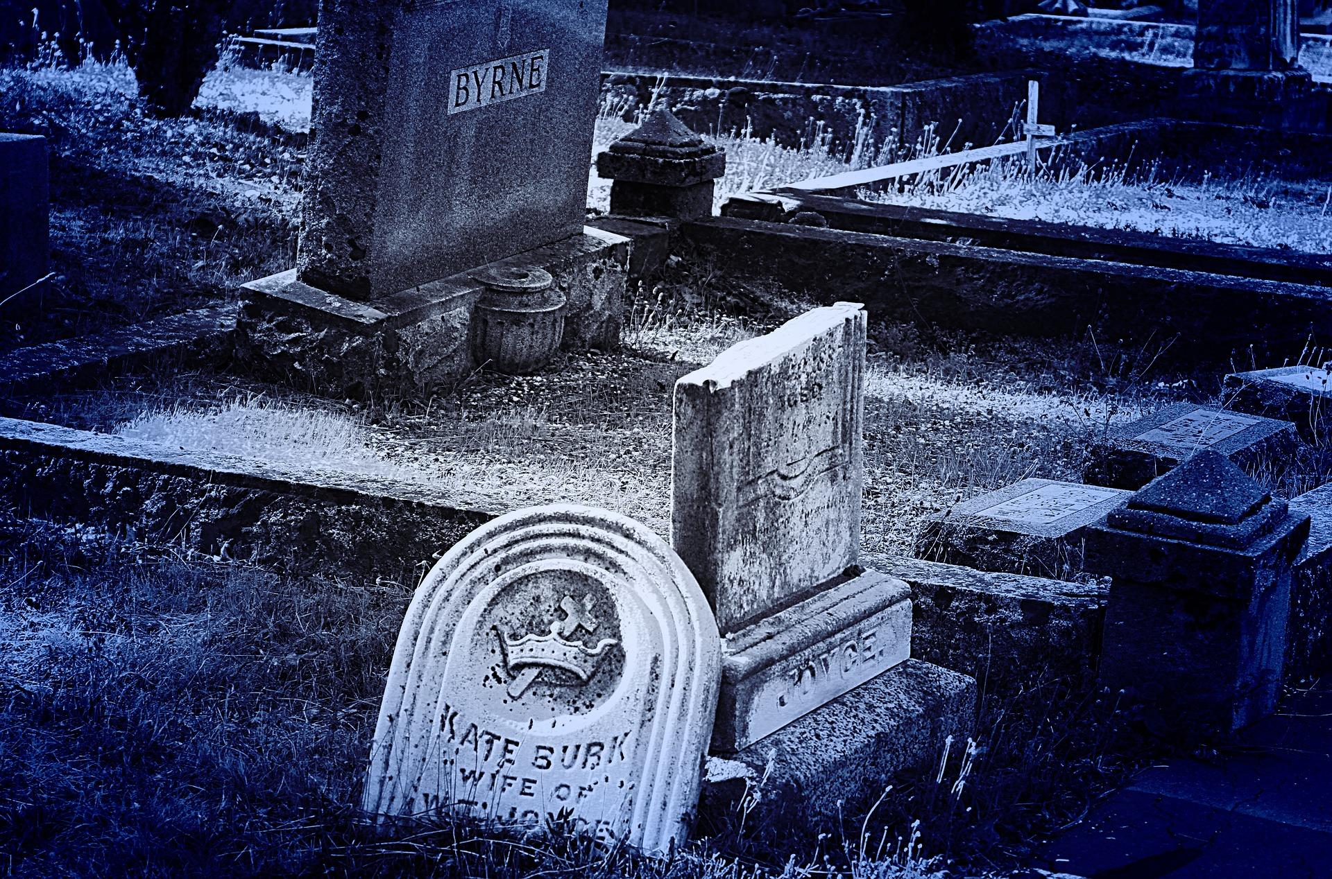 Nettoyeur de tombes : Je ne t'oublie pas